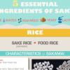 5 ESSENTIAL SAKE INGREDIENTS